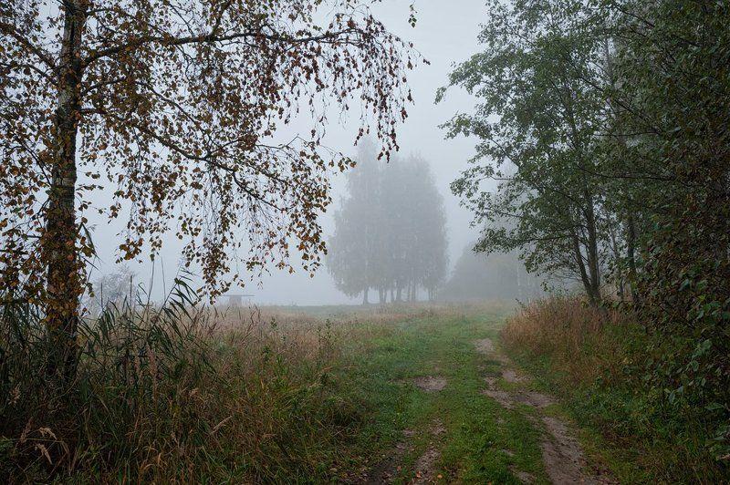 В туманном сентябре...и в августе чуть чуть печальномphoto preview