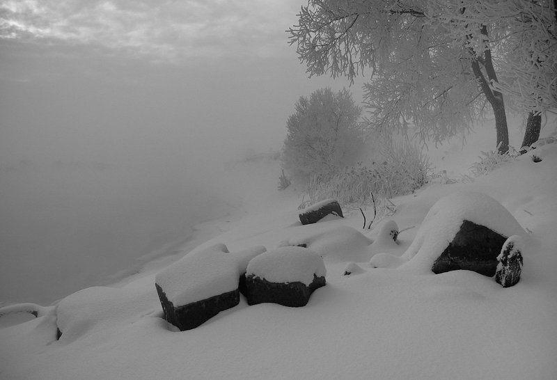 Чёрно-белые сны о зимеphoto preview