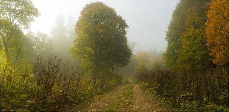 адыгея, осень ещё раз об осени в Адыгее...photo preview