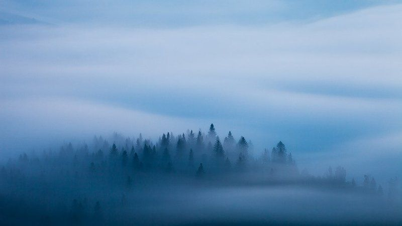 slovakia, light, morning, blue, fog, mist, mountains, spring, trees, flow, twilight, dawn, mood, atmosphere, landscape, nature Blue Velvetphoto preview