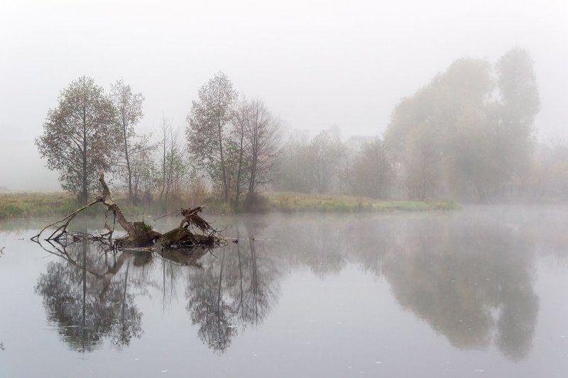 вода, природа, река, туман Туманphoto preview