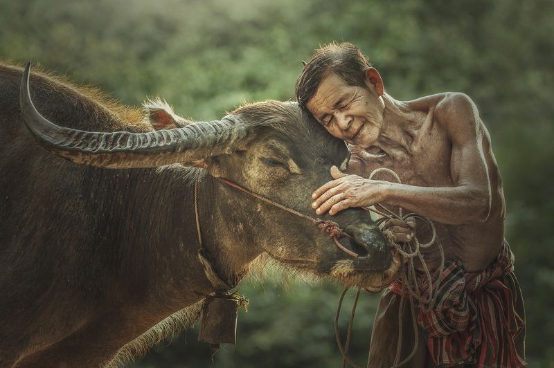 Rural Scene Agriculture Country Road Cultivated Land Farmer Friendship Horizontal Lifestyles Living Organism Love Male Friendship Occupation Outdoors Pets Photography Professional Occupation Thai Culture Thailand Tradition beautiful city clouds green rain The bound of the master and faithful pet.photo preview