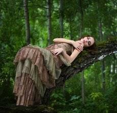 * философия леса *