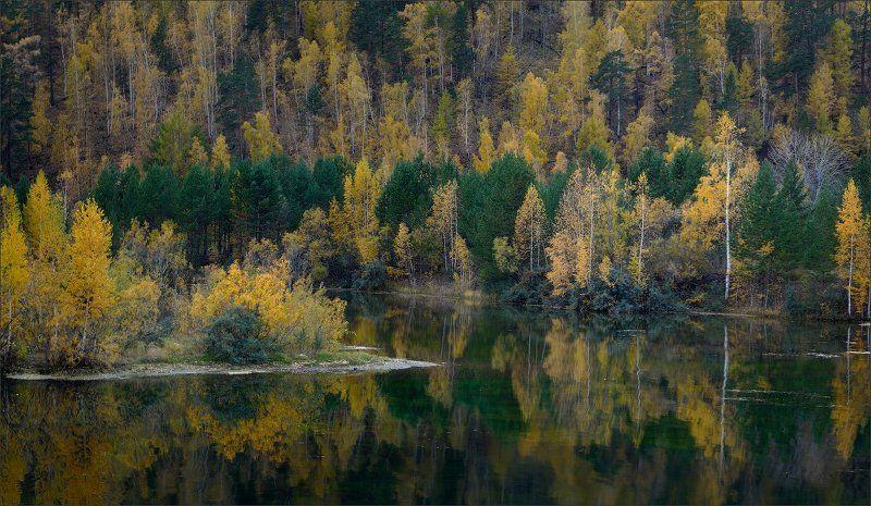 Осенняя тушьphoto preview