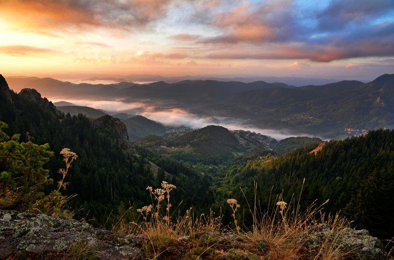 Tanya, Bulgaria