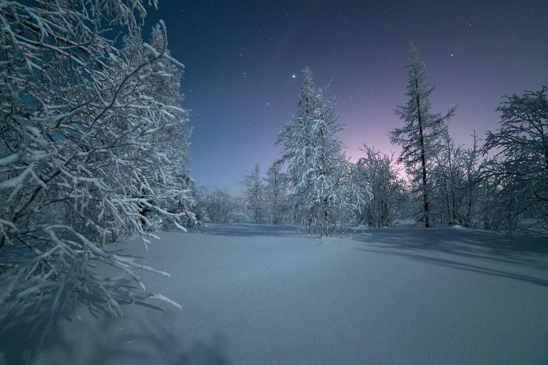 Звезды, Зима, Ночь, Ямал Цвет ночиphoto preview