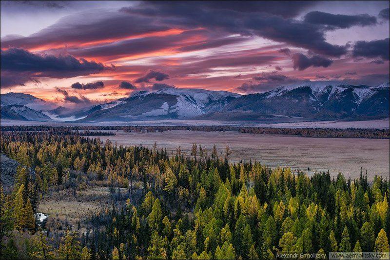 Altai, Алтай ~ Курайское золото ~photo preview