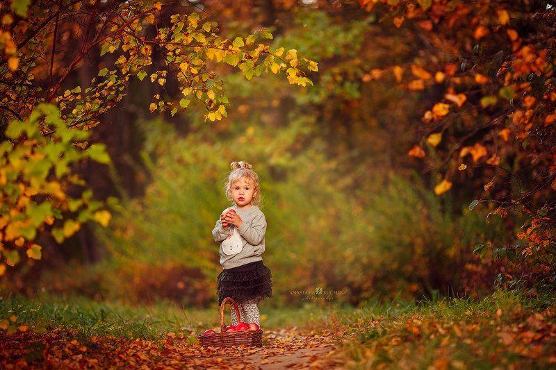 девочка, осень, прогулка, лес Осеньphoto preview
