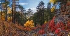 Краски осеннего Архыза