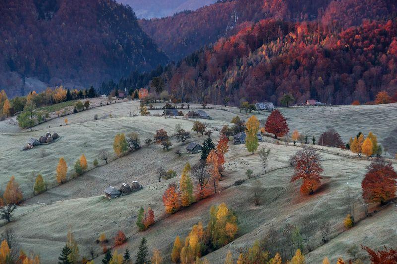 Mihail Dulu, Romania