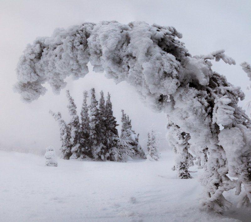 Восковые истуканы северного Уралаphoto preview