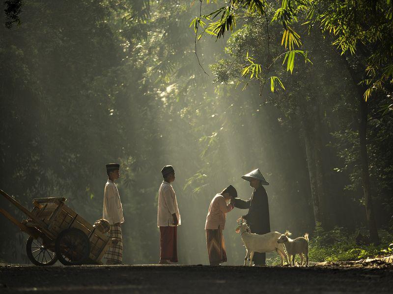 Tri Handoko, Indonesia