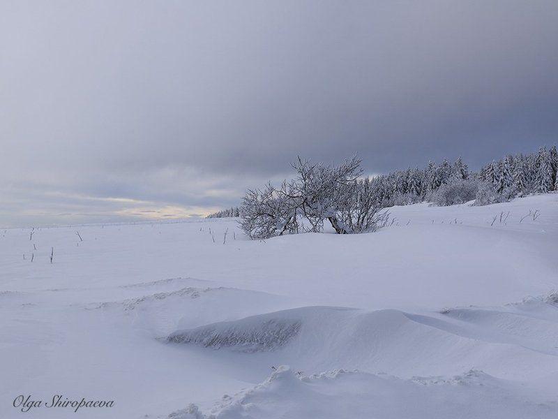 Чехия Германия зима снег  Божий Дар. Чехия. фото превью