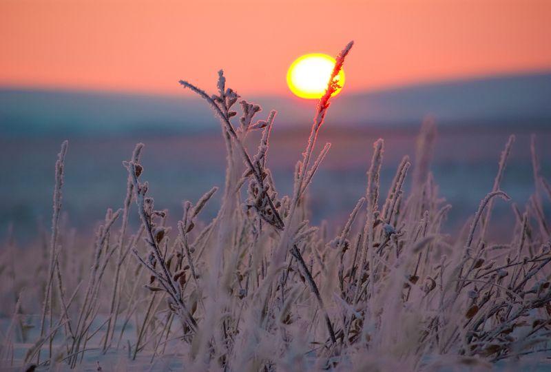 Первое солнце после долгой полярной ночиphoto preview