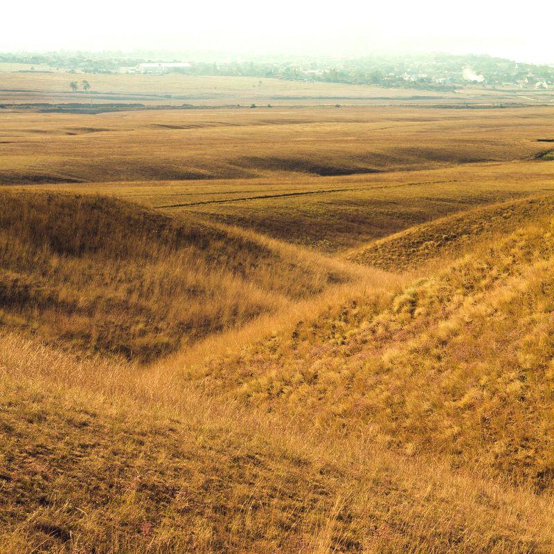 тамань, лето, поле, холмы Выжженные солнцем холмы Тамани.photo preview