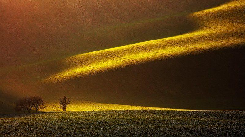 Beautiful, Czech republic, Landscape, Light, Photo tour, South moravia, Workshop Moravian Linesphoto preview