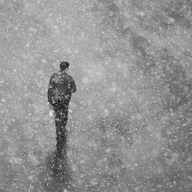 #dendzen Снег начнетсяphoto preview
