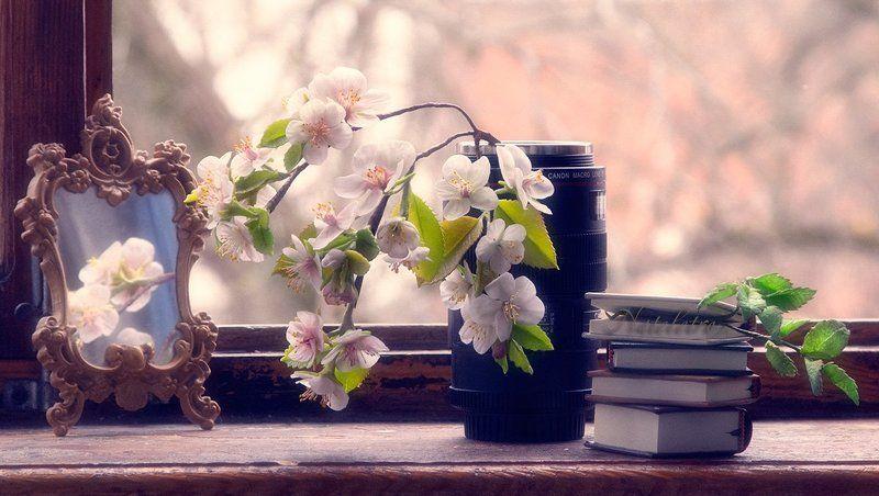В ожидании весны...photo preview