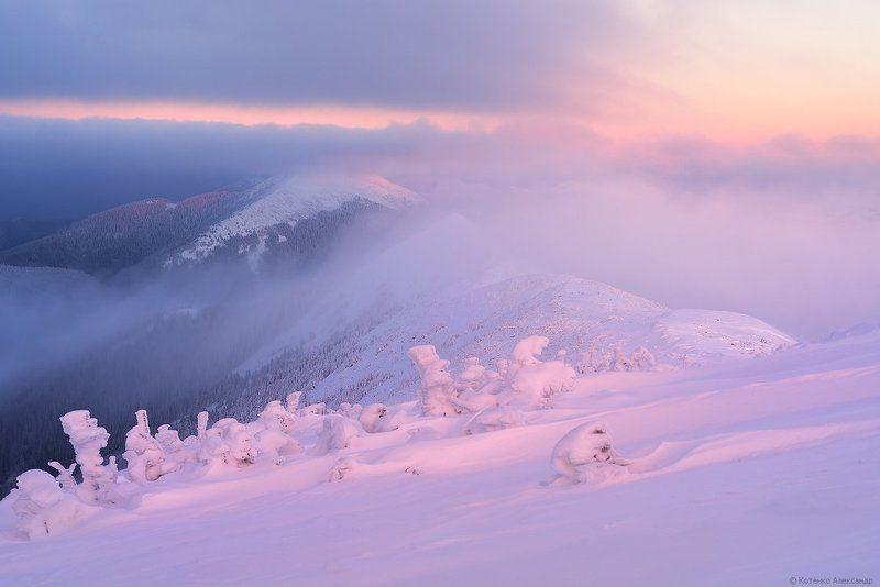 Горганы, Горы, Зима, Карпаты ***photo preview