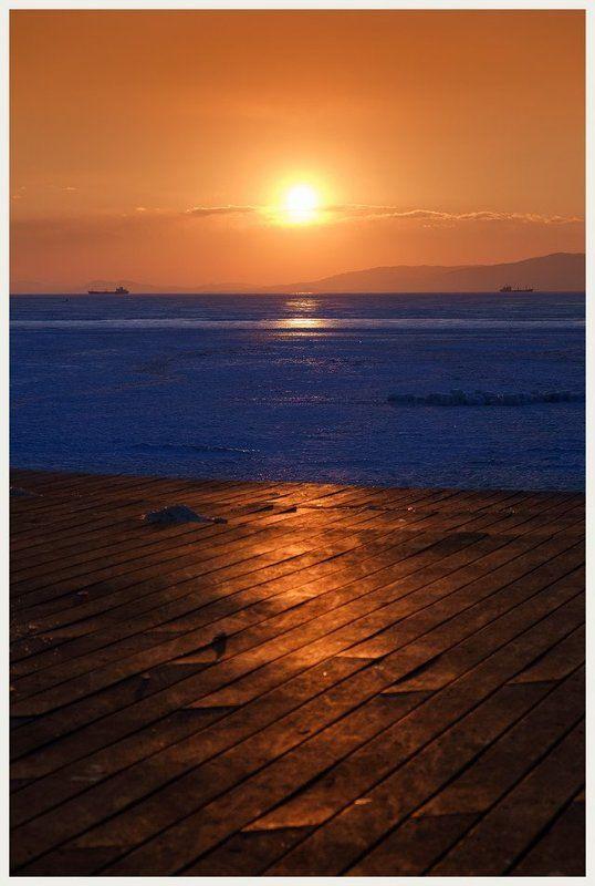 Море зимних цветовphoto preview