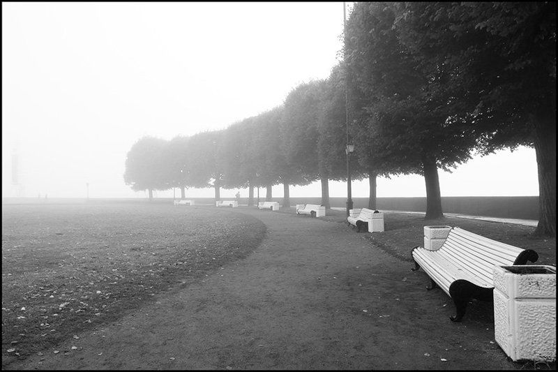 санкт-петербург,стрелка,туман,пейзаж Asymmetriaphoto preview