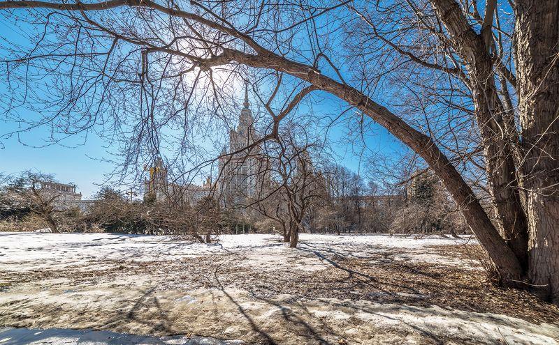 мгу Весенний солнечный денекphoto preview