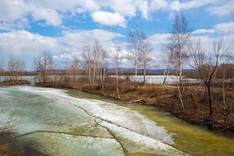апрель Льдинка, растайphoto preview
