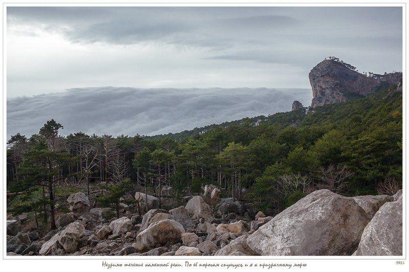 анатолий покровский, горы, камни, крым, лес, облака, скалы, сосны, шаан-кая Незримо течение реки времени. По её порогам спущусь и я к призрачному морюphoto preview