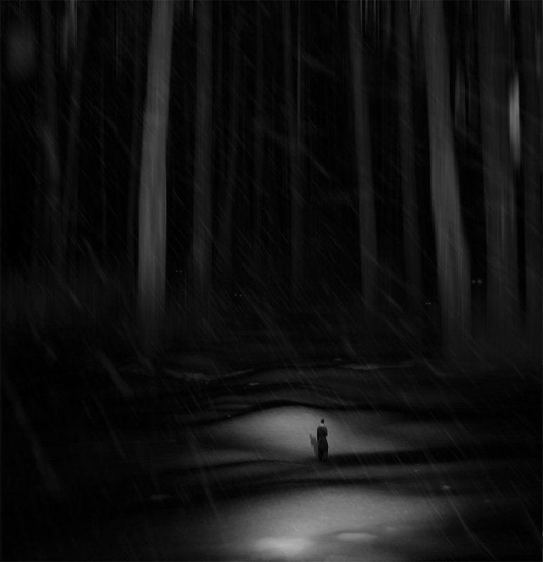 Вечер в лесу...photo preview