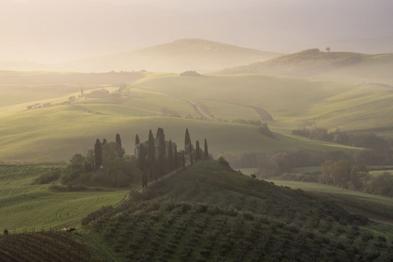 пейзаж, утро, восход, туман, холмы, италия, тоскана Зеленые холмы Тосканыphoto preview