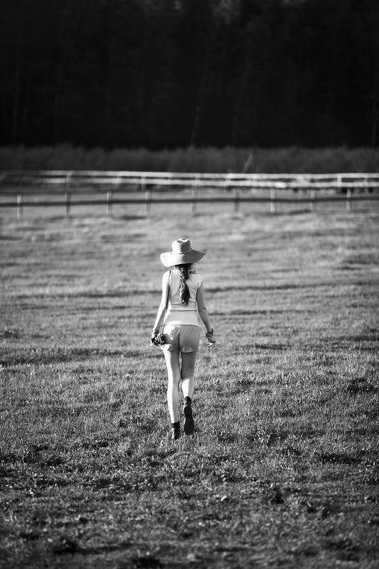 Summer fieldphoto preview