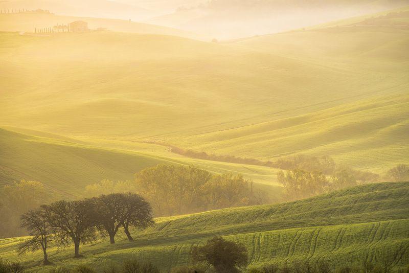 пейзаж, италия, тоскана, холмы, утро, рассвет, туман, природа, долина Холмы, холмы, холмы...photo preview