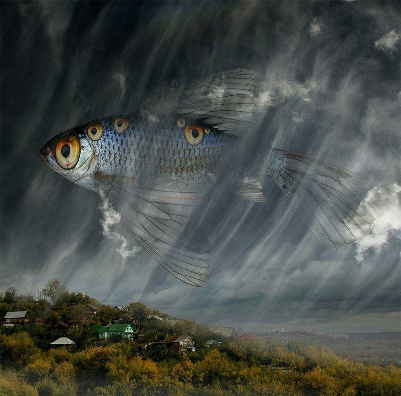 Рыбьи сны...photo preview