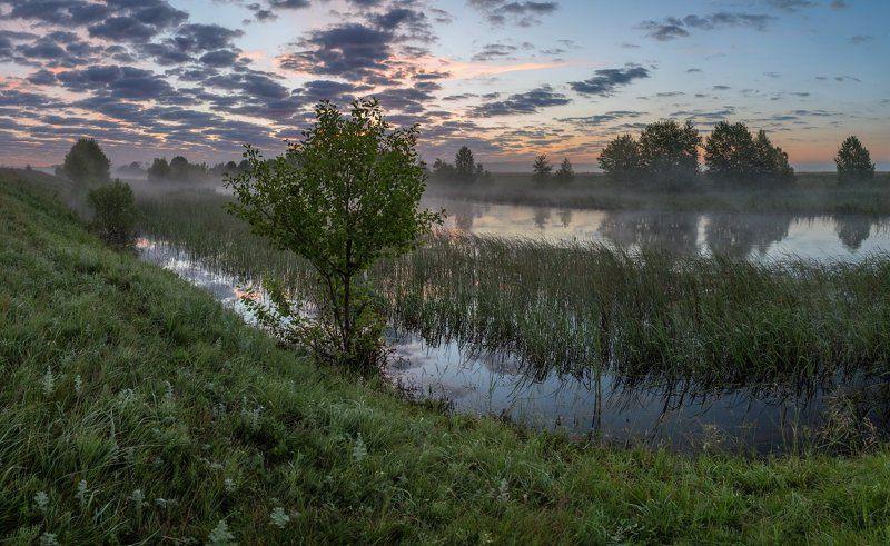 Вниз по течению рекиphoto preview