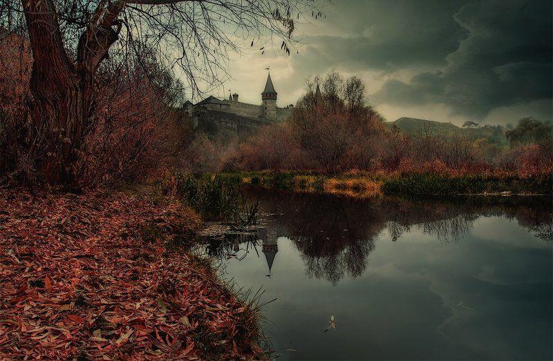 Вечер, Дерево, Каменец-Подольский, Осень, Отражение, Река, Смотрич, Тучи, Украина мрачный вечер на реке Смотрич IIphoto preview