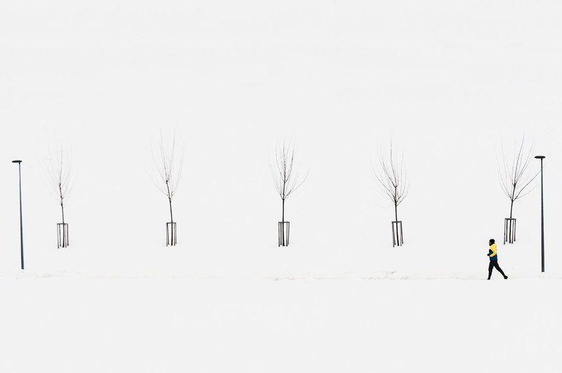 Деревья, Зима, Человек ||*|photo preview