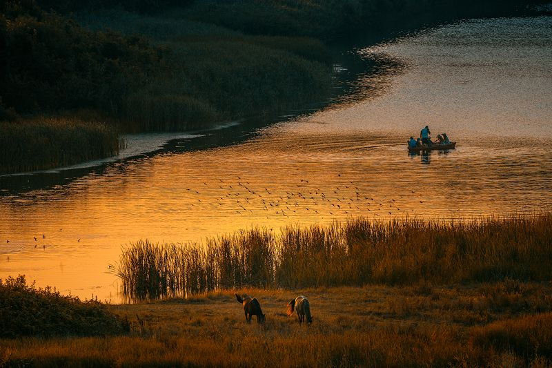 boat, gold, horses, mirror, morning, people, river Early in the morning by the river bank...photo preview