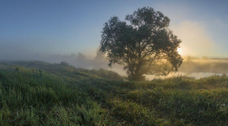 Дорогами утренней росыphoto preview