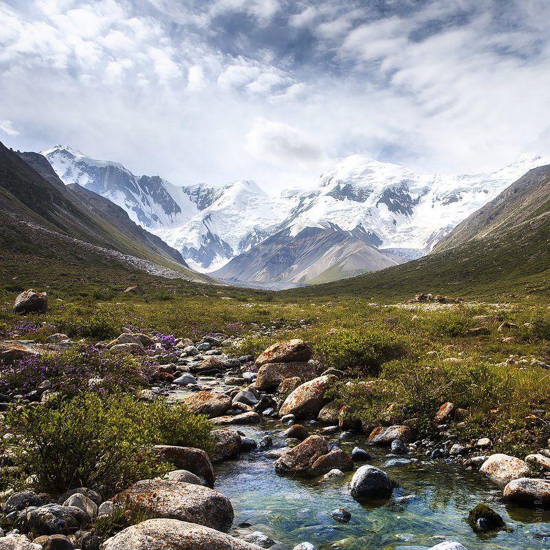 горы, казахстан Центральный Тянь-Шаньphoto preview
