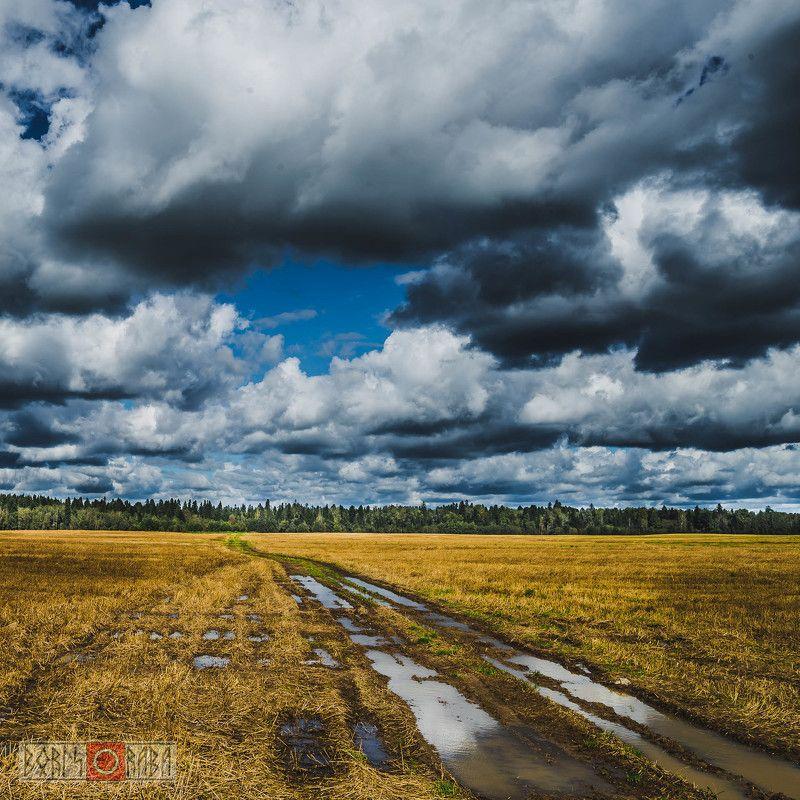 поля, тучи Поля Ленинградской областиphoto preview