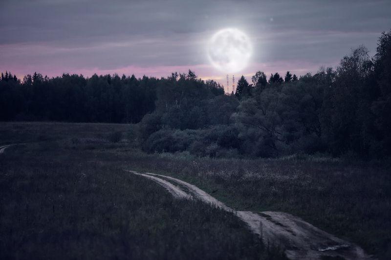 ночные фантазииphoto preview