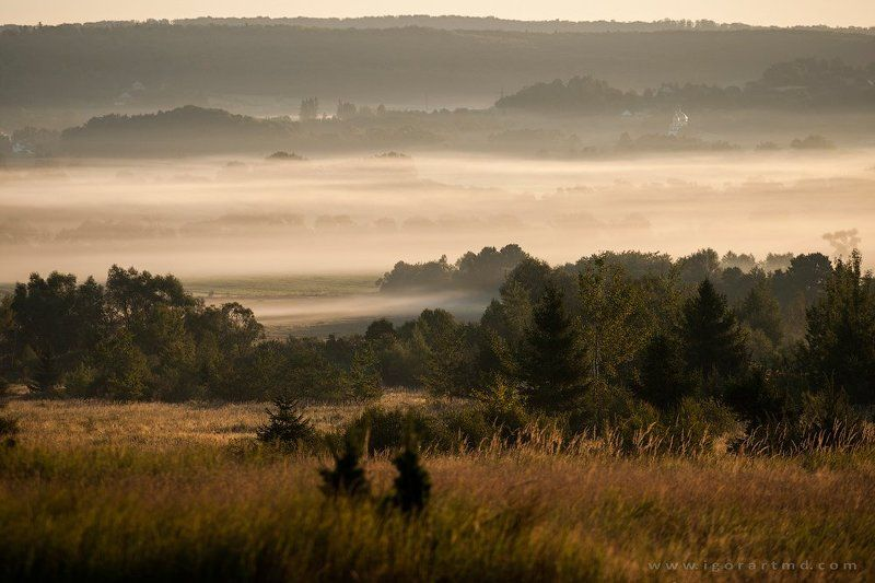 fogtimephoto preview