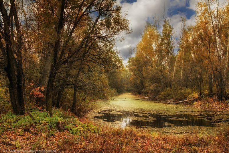 Осень, Природа ***photo preview