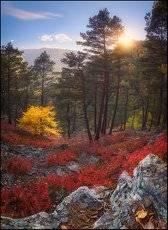 Яркие краски осеннего Архыза