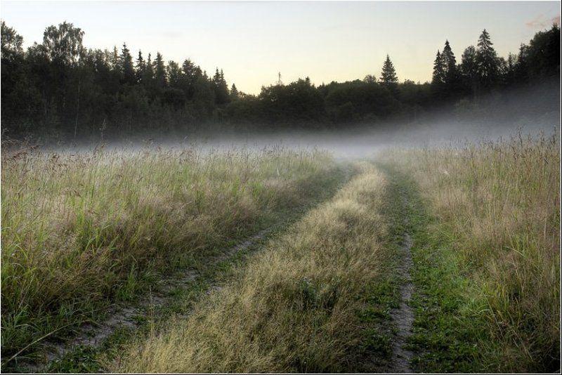 утро, туман, дорога Туманным утром шел я по дороге...photo preview