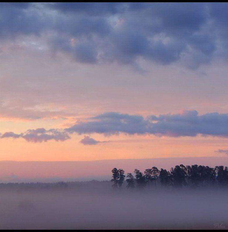 утро, туман, прохлада photo preview