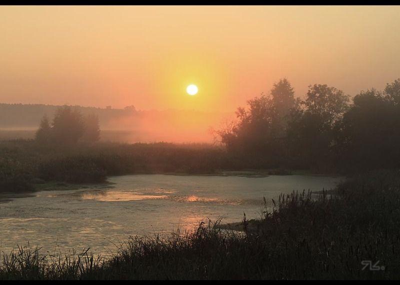 утро, туманное На зорькЕphoto preview