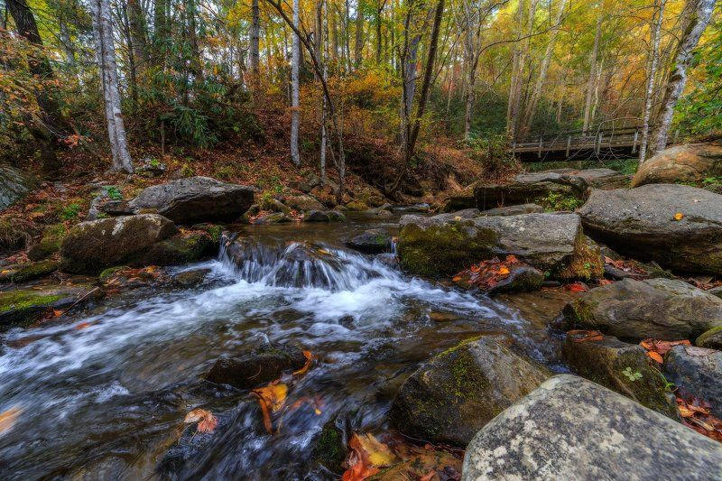 Осенняя речкаphoto preview