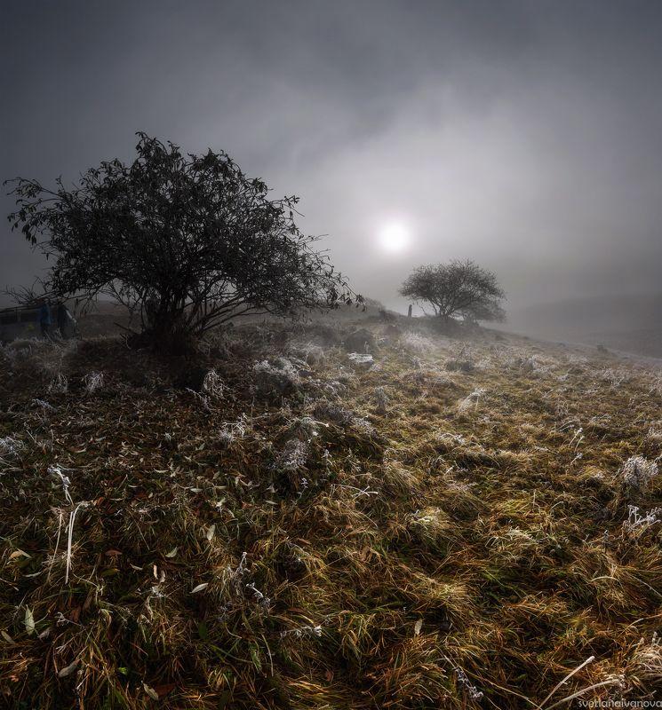 Люблю морозное дыханье...photo preview