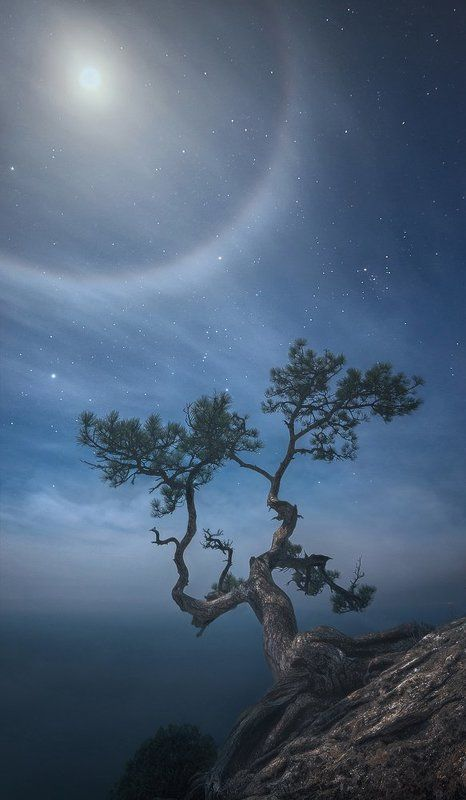крым, новый свет Ночь на пике Космоса. Лунное гало.photo preview